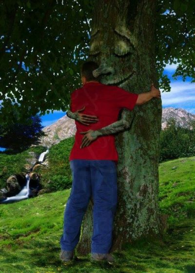ölelj fát, a fák gyógyító ereje